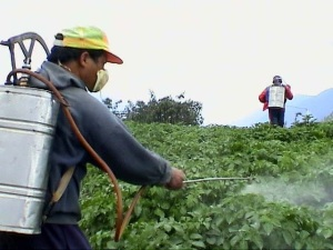 Current farming techniques involves chemicals to grow food as if nature forgot how to do it.